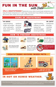 Pet heatstroke poster. Click image to download.
